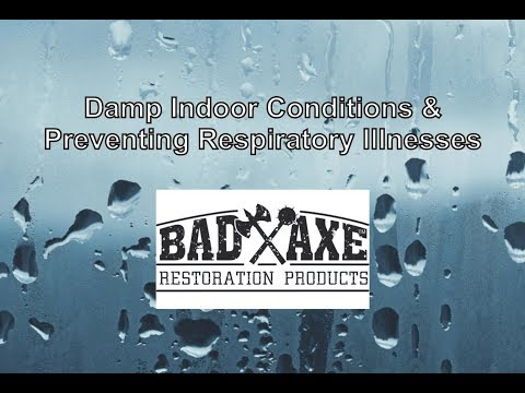 Damp Indoor Conditions & Preventing Respiratory Illnesses by Bad Axe Restoration Products