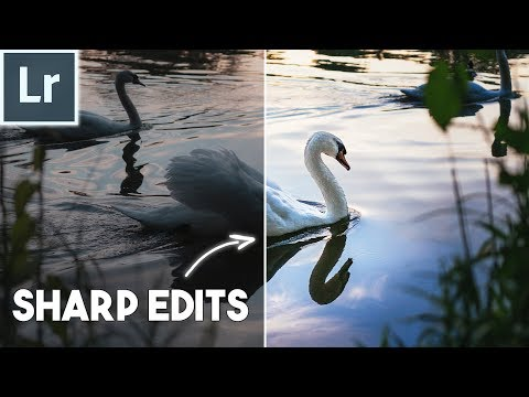 How to use the DETAIL PANEL for SHARP PHOTOS