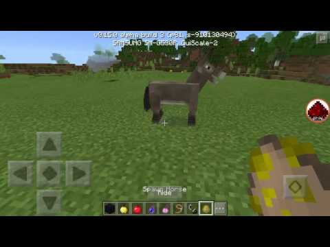 A FLYING HORSE?! (MINECRAFT PE)