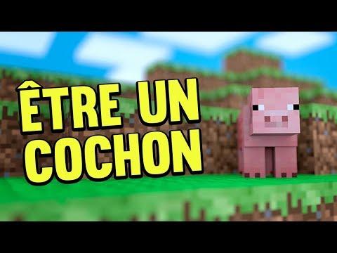 ÊTRE DANS LA PEAU D'UN COCHON ! - FILM MINECRAFT HD