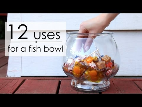 12 Uses for a Fish Bowl