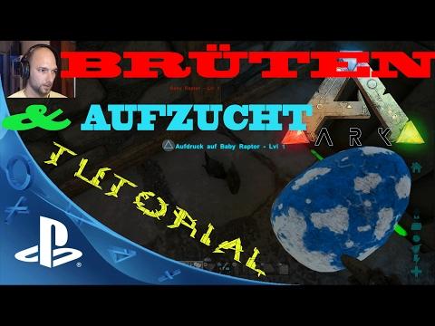 ARK PS4🇩🇪 Eier ausbrüten und Aufzucht - Ark Survival Evolved Tutorial Playstation 4 Deutsch / German