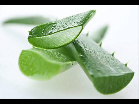Home Remedies for Scar Removal - The Benefit of Aloe Vera Gel on Scars