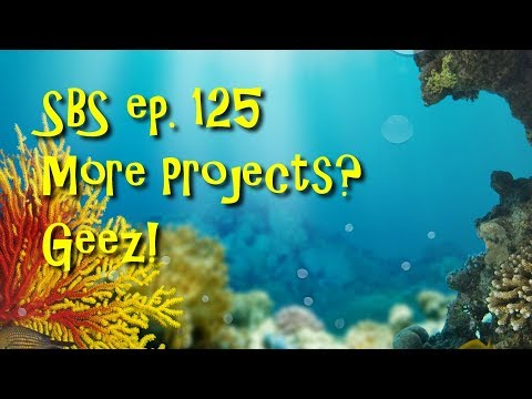 SBS ep. 125 - More Projects?  Geez!