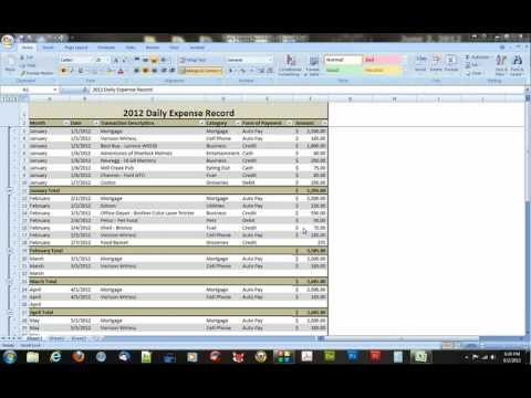 A Microsoft Excel 2007 Daily Expense Record.avi