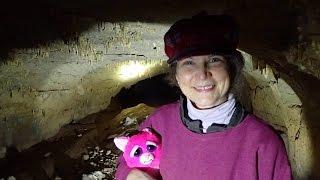 Feisty Cat Cave Adventure
