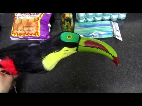Anmiatronic Toucan Project PART 1