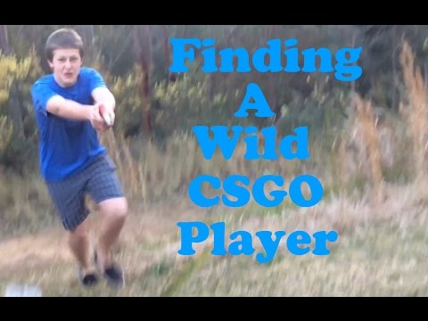 Finding a Wild CSGO Player