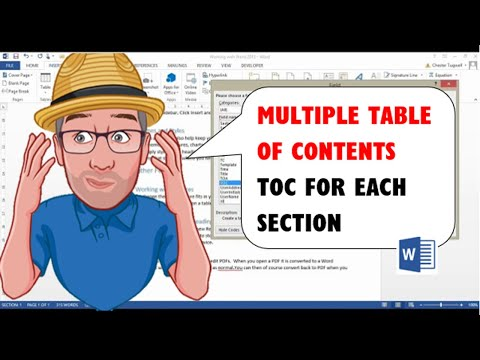 Multiple Table of Contents in Word/ TOC for Each Section