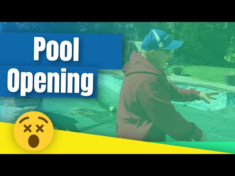 Pool Opening Quick Look