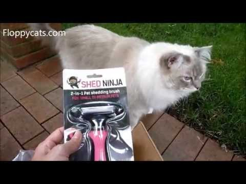 Shed Ninja 2-in-1 Pet Shedding Brush Arrives for Review - ねこ - ラグドール - Floppycats