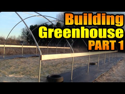 Building Greenhouse Step One