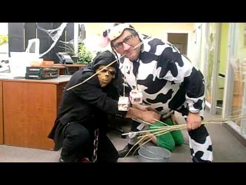 Halloween cow costume