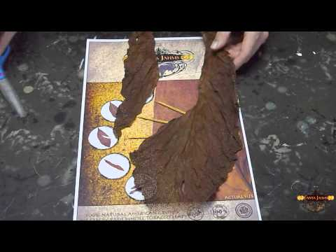 Fanta Jahms - How To Use The Whole Leaf