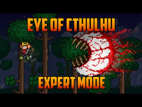 Terraria 1.3 - Eye of Cthulhu Expert Mode Boss Guide