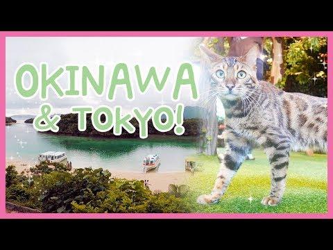 MY OKINAWA TRIP ☆ Ishigaki & Tokyo P2~ | Cece in Japan - '17 🌴