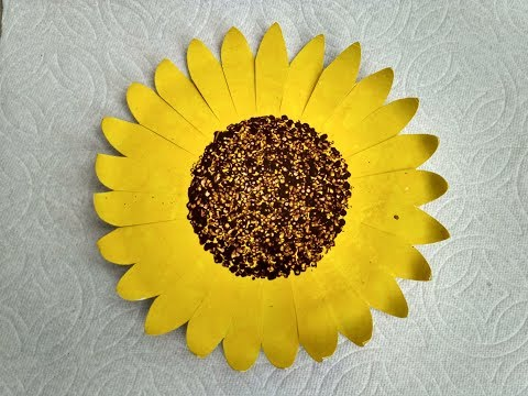 Making sunflower with paper plate