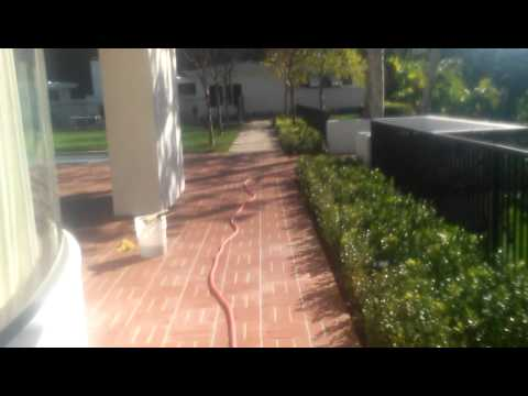 Video 1- Muriatic Acid Cleaning of brick work.