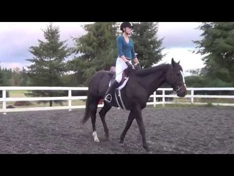 Exercises for improving the rider's leg