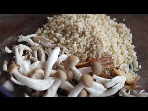Microwave Steamed Mushroom Rice Recipe | ASMR