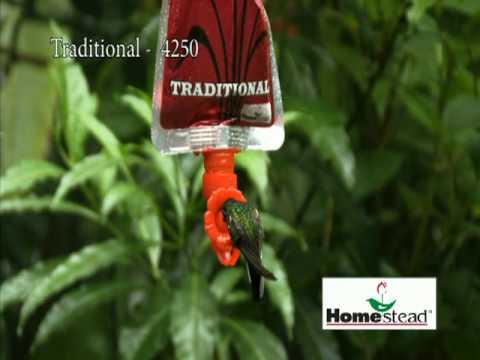 Nectar Gem- Traditional