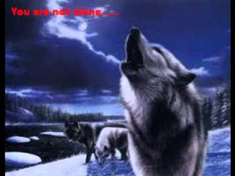 Online werewolf pack; Dark Star