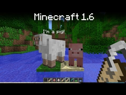 Minecraft 1.6 update - Name tags!