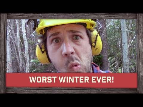 The Worst Winter Ever!