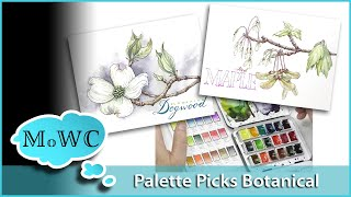 Download NEW Series! ″Palette Picks″ w/Line and Wash Botanical Demo. Video