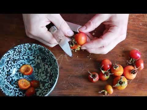 Cleaning rose hips for cooking or jam