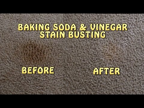 Baking Soda & Vinegar Carpet Stain Busting!!!