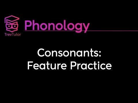 [Phonology] Consonant Feature Practice