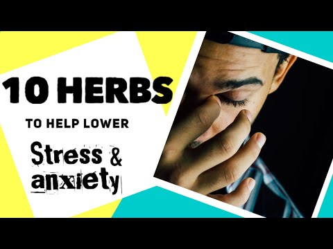 10 Herbs to help lower your STRESS and ANXIETY levels