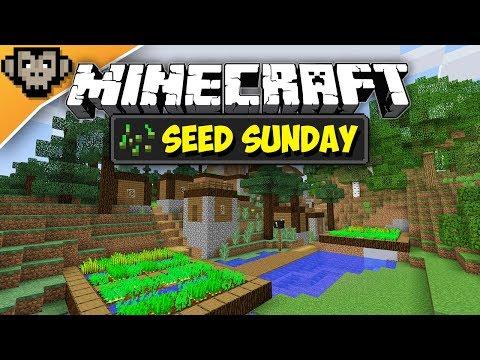Minecraft 1.12.2 | Taiga Village Spawn | Seed Sunday - Ep258