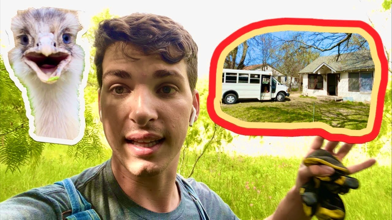 Why I Bought a Bus and Crackhouse for Animal Rescue (and Kevin)