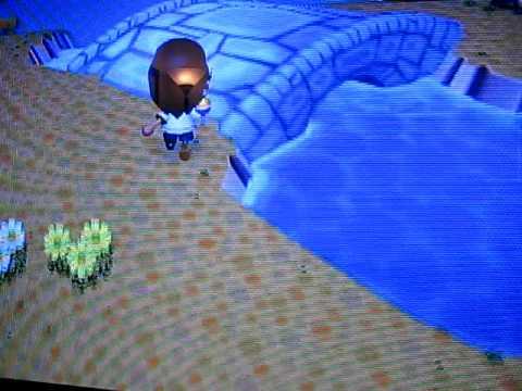 Animal Crossing City Folk - Catching an Eel