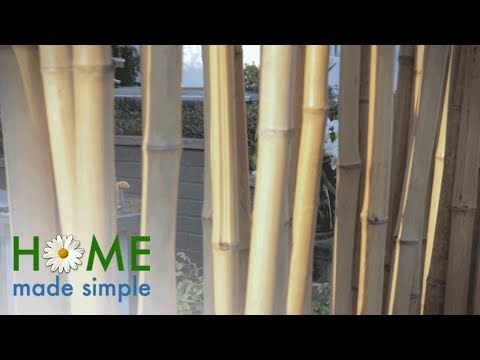 This Simple Backyard Project Creates a Stylish, Versatile Privacy Wall | Home Made Simple | OWN