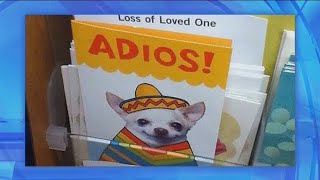 Coincidence, I Think Not: Adios!