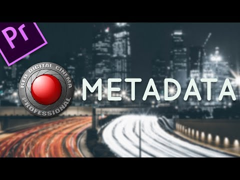 How to edit RED raw Metadata in Premiere Pro - 2 minute tutorial