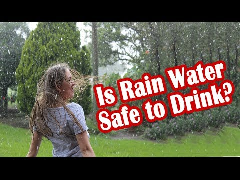 Is Rain Water Safe to Drink?