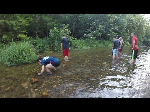 Catching Crawfish By Hand 4K HD