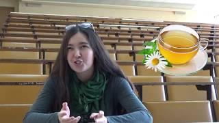 Студенты МГУ о ЕГЭ и поступлении:  как готовиться, как не нервничать, как списать