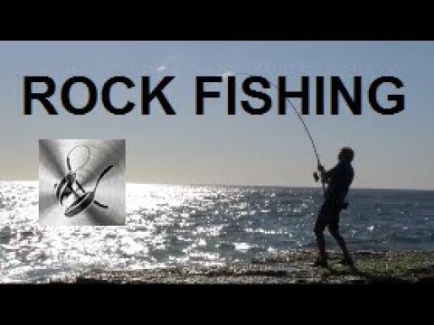 ROCK FISHING | The Hook and The Cook