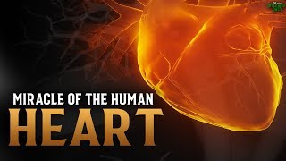 MIND BLOWING MIRACLE OF THE HUMAN HEART!