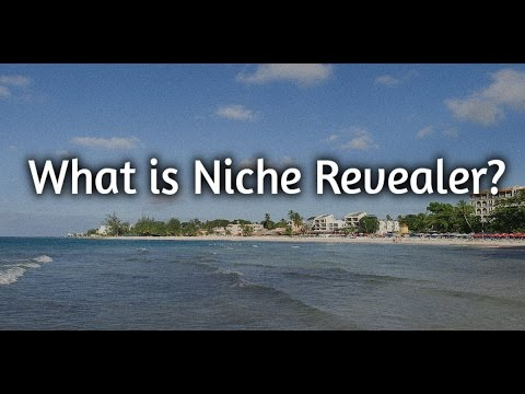 What is Niche Revealer? -A Look Inside