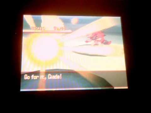 Pokemon Black Zoroark Catch