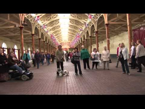 Barnstaple Community Choir Flash Mob at the Pannier Market
