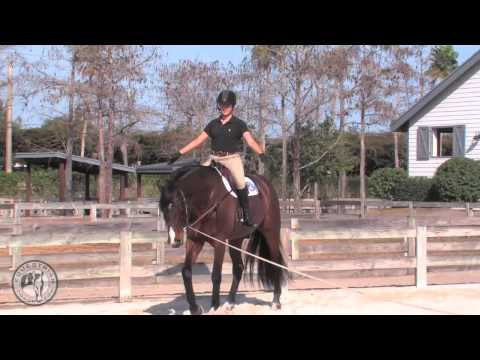 A Lunge Lesson
