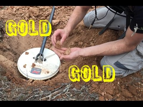 FINDING GOLD NUGGETS. Metal Detecting VIC Australia