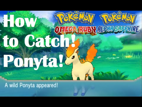 Pokemon Omega Ruby and Alpha Sapphire HOW TO CATCH/FIND A PONYTA ON JAGGED PASS!